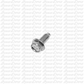 Valve Cover Screw, Animal