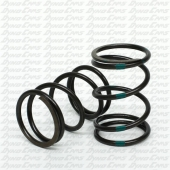 Improved 10.8lb Valve Spring, Preset, Clone