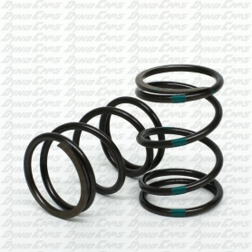 "Improved 10.8lb ""Green Stripe"" Valve Spring, Preset, Clone"