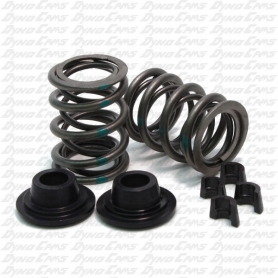 36lb Dual Valve Spring Kit with Hardware, Clone