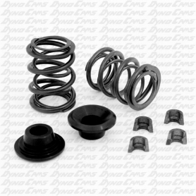 32lb Dual Valve Spring Set with Hardware, Clone