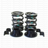 36lb Dual Valve Spring Set with Hardware, Animal