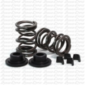 38lb Dual Valve Spring Set with Hardware, Flathead