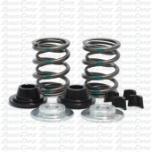 36lb Dual Valve Spring Set with Hardware, Flathead