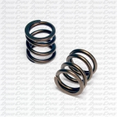 Comp Cams OHV Spring Set, Animal