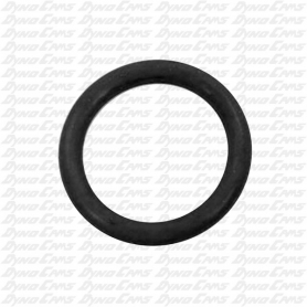 MINI LITE MC O RING